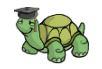 turtle-logo